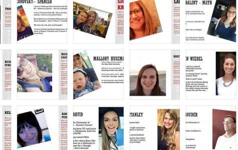 New Teacher Profiles