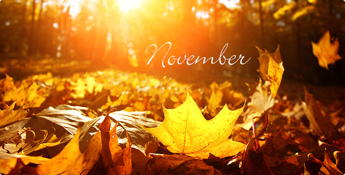 Quotes On Happy Thanksgiving >> November: The Boring Month of Fall? – BV West Spotlight Online