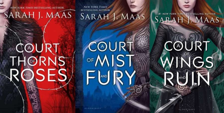 The Pros and Cons of Reading ACOTAR