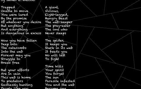 Enter the Web
